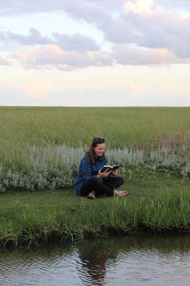 mit beliebtester Ferienhof S-H - Entspannung mit Buch direkt an der Nordsee